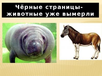 img_user_file_5487761d9757e_3